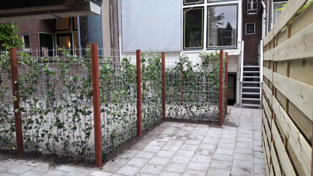 Het plaatsen van hard houten palen met gegalvaniseerd betongaas en klimop als afscheiding